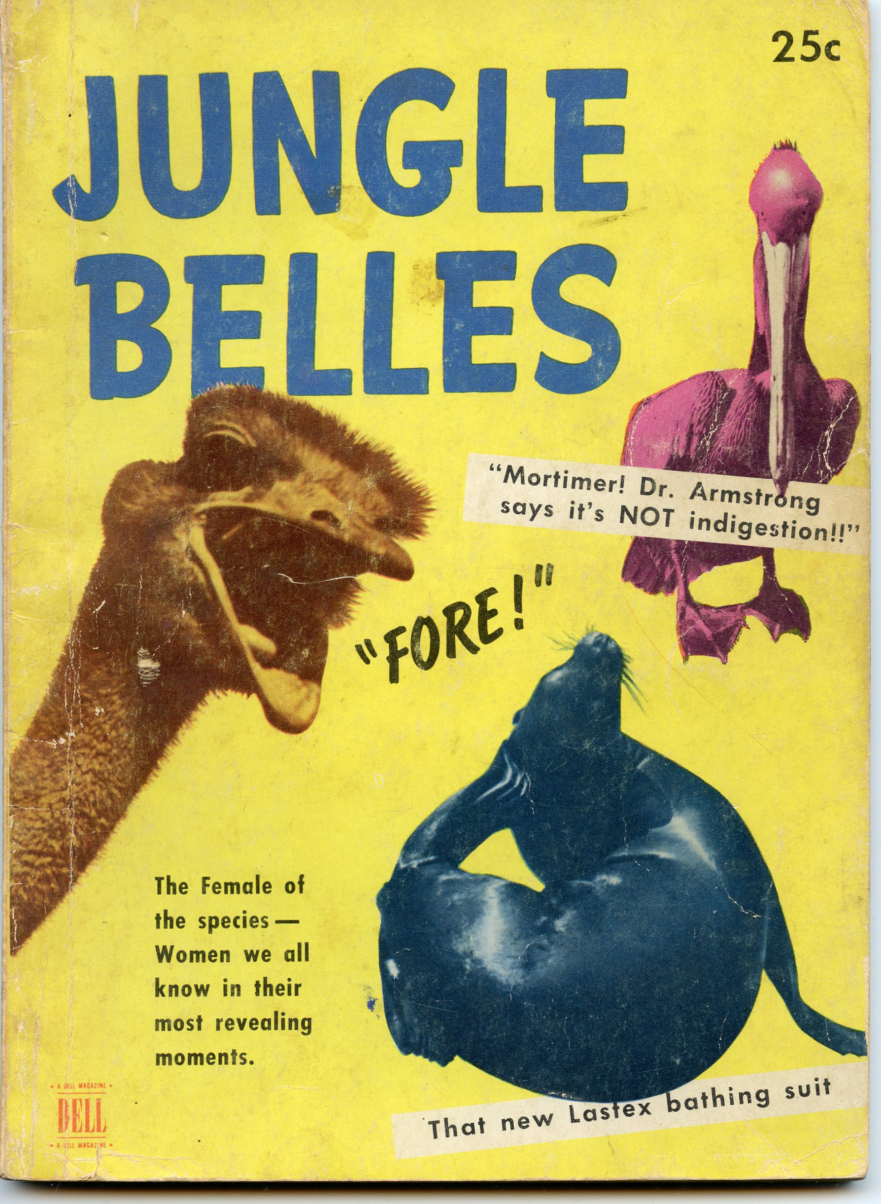 Image for Jungle Belles