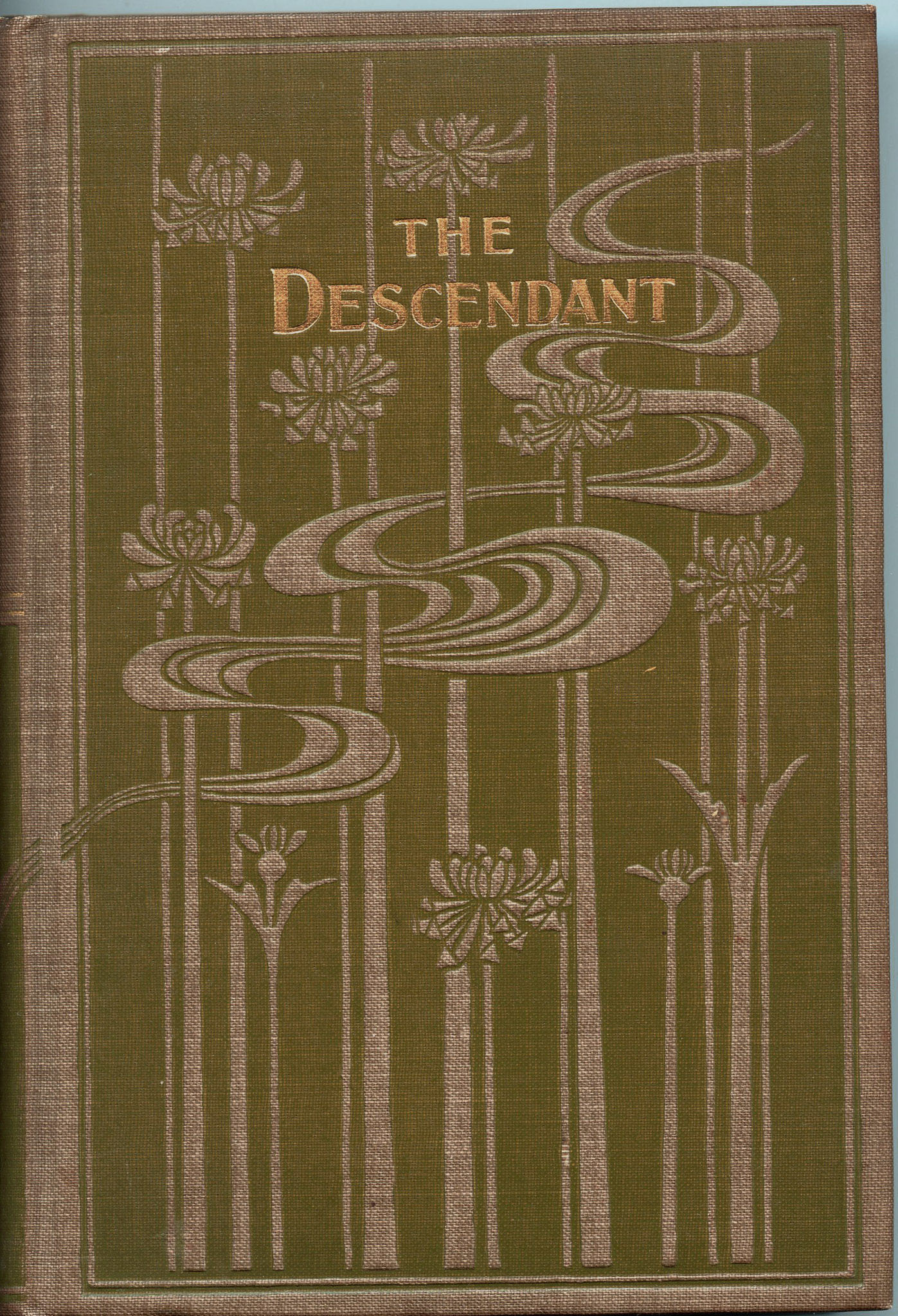 Image for The Descendant